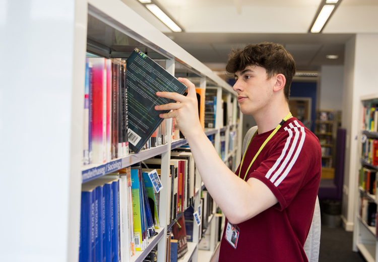 male choosing a book in the library