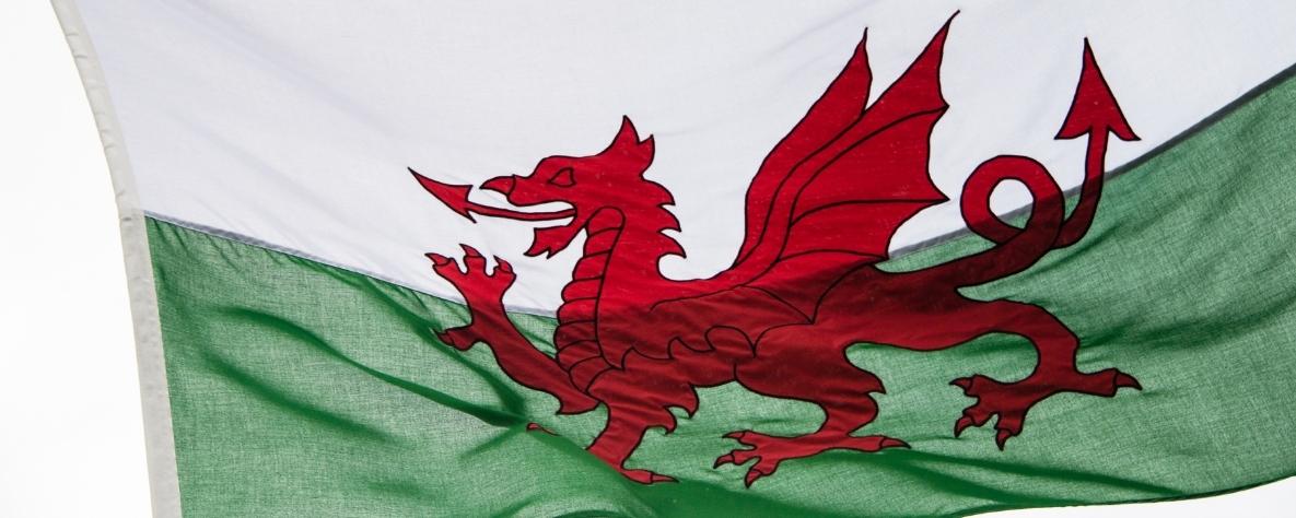 Welsh Language Week - Welsh flag